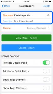 site_report_create_report_enter_filename