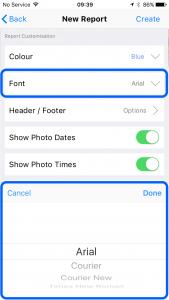 snag audit pro app report font customisation 169x300 - Site Report Pro Report - Theme Font Customisation